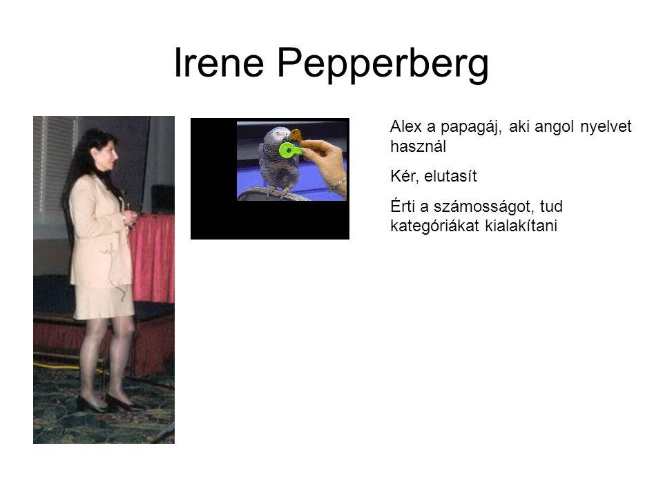 Irene Pepperberg Alex a papagáj, aki angol nyelvet használ