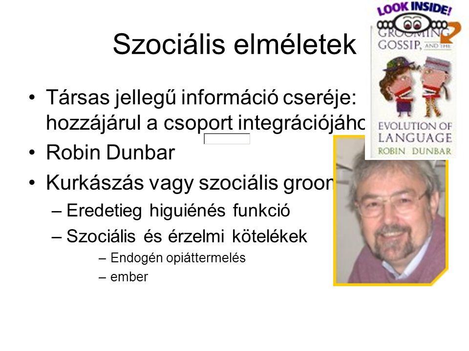 Szociális elméletek Társas jellegű információ cseréje: hozzájárul a csoport integrációjához. Robin Dunbar.