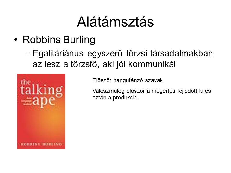 Alátámsztás Robbins Burling
