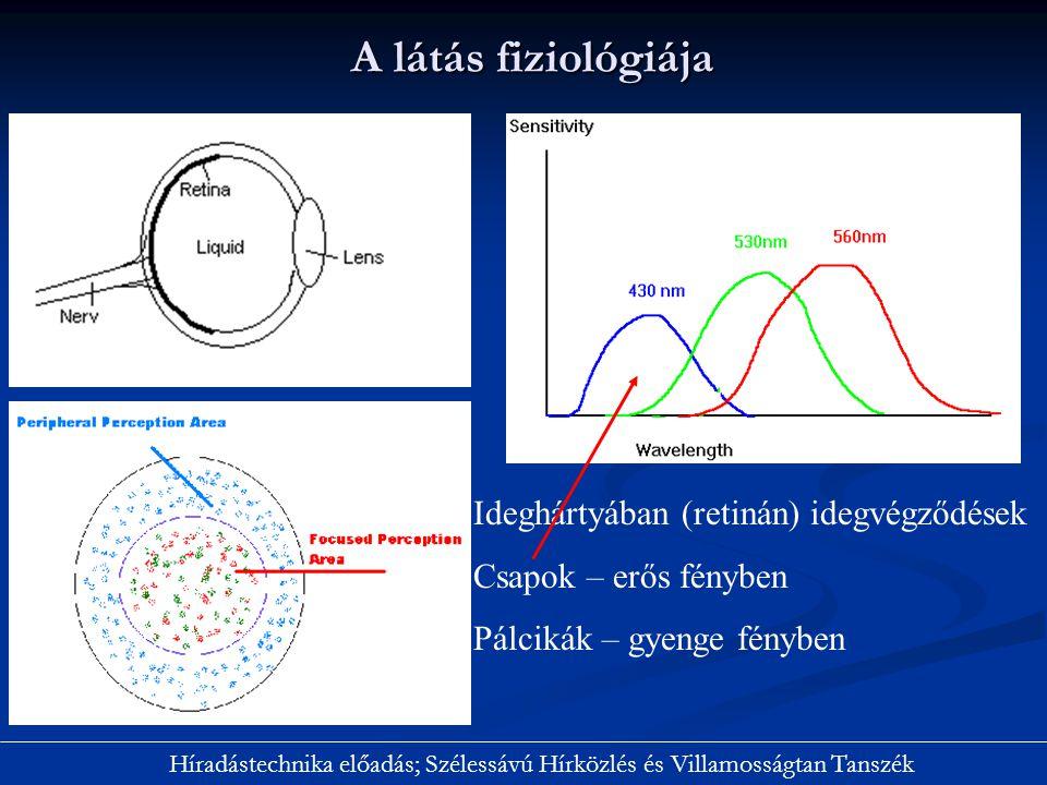 A látás fiziológiája Ideghártyában (retinán) idegvégződések