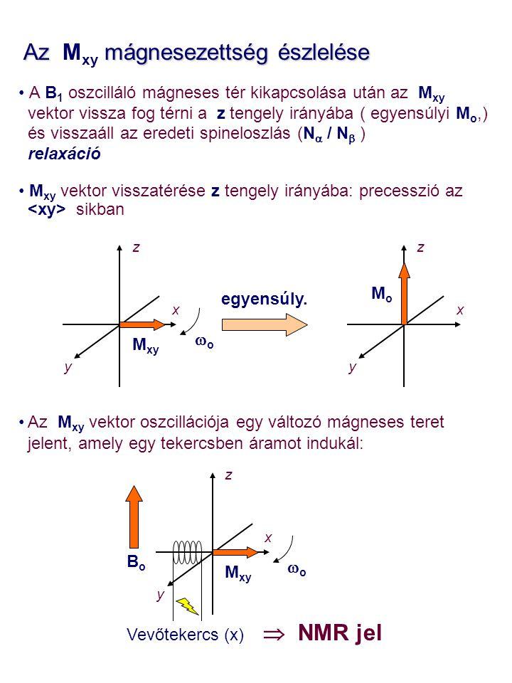 Az Mxy mágnesezettség észlelése