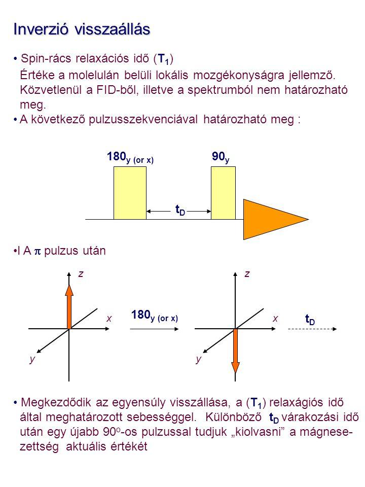 Inverzió visszaállás Spin-rács relaxációs idő (T1)