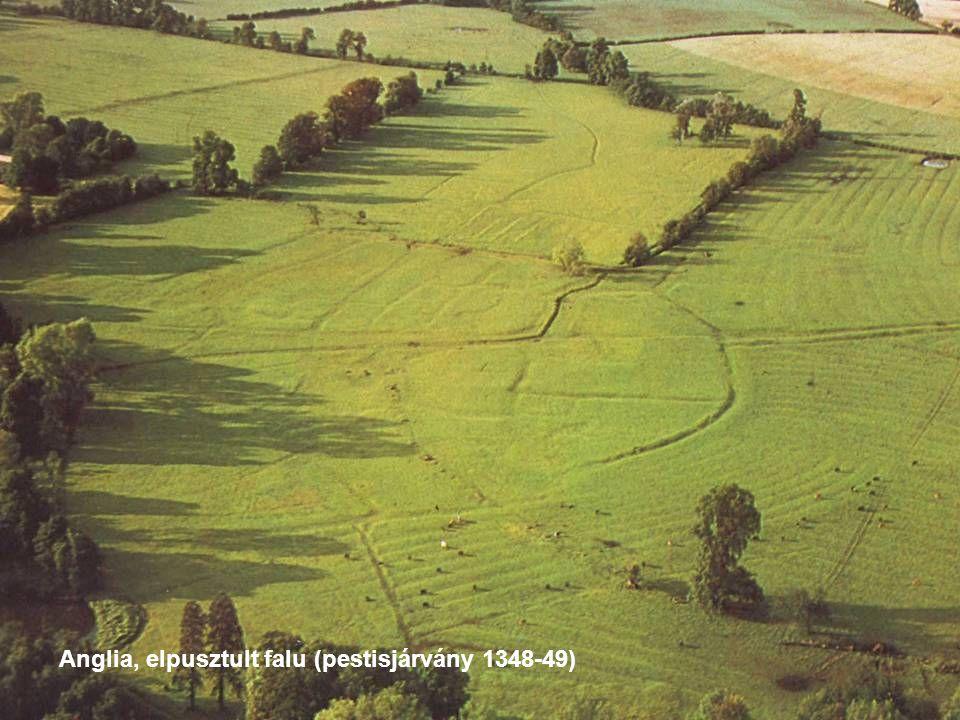 Anglia, elpusztult falu (pestisjárvány 1348-49)