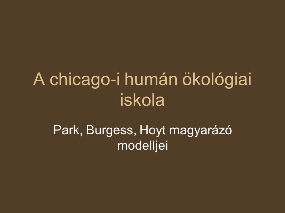A chicago-i humán ökológiai iskola