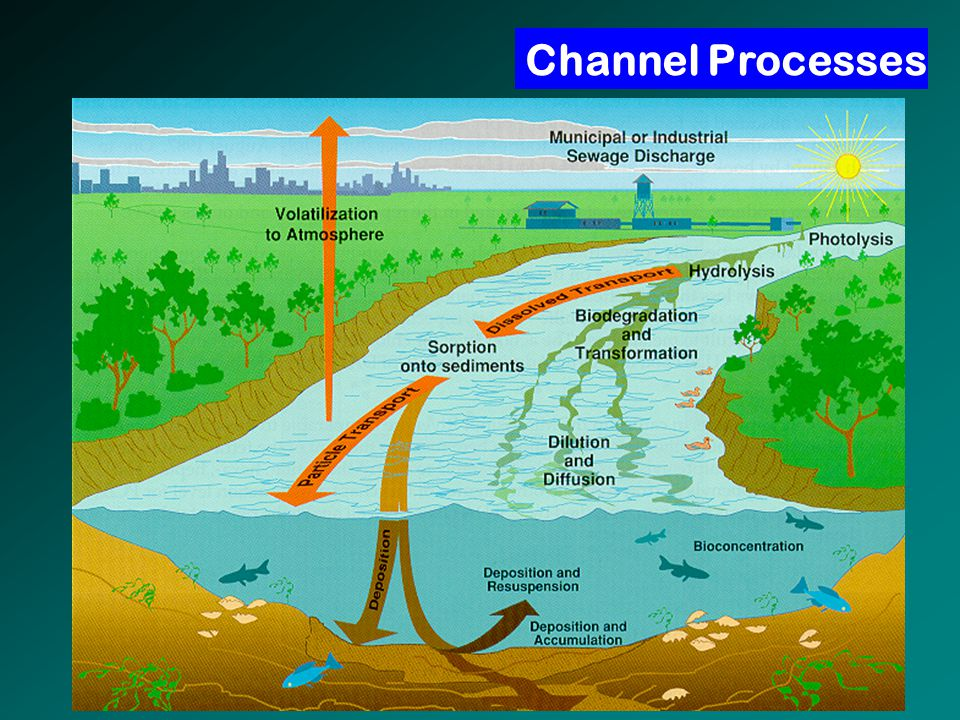 Channel Processes