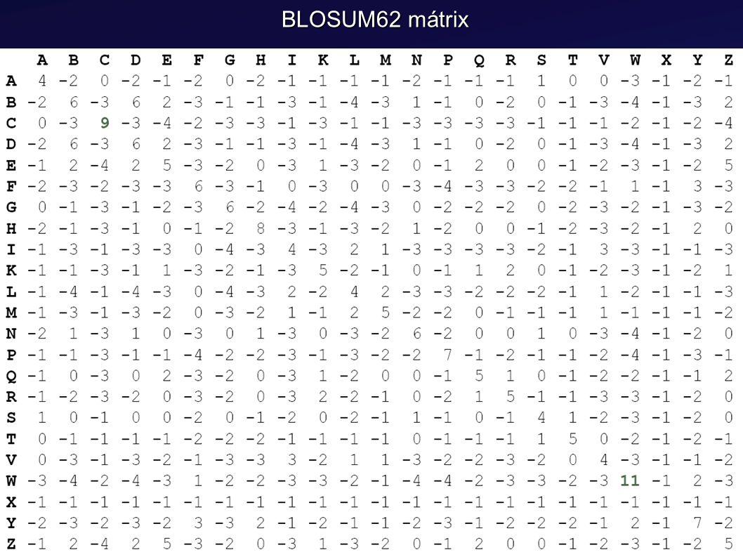 BLOSUM62 mátrix