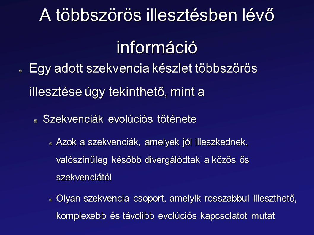 A többszörös illesztésben lévő információ