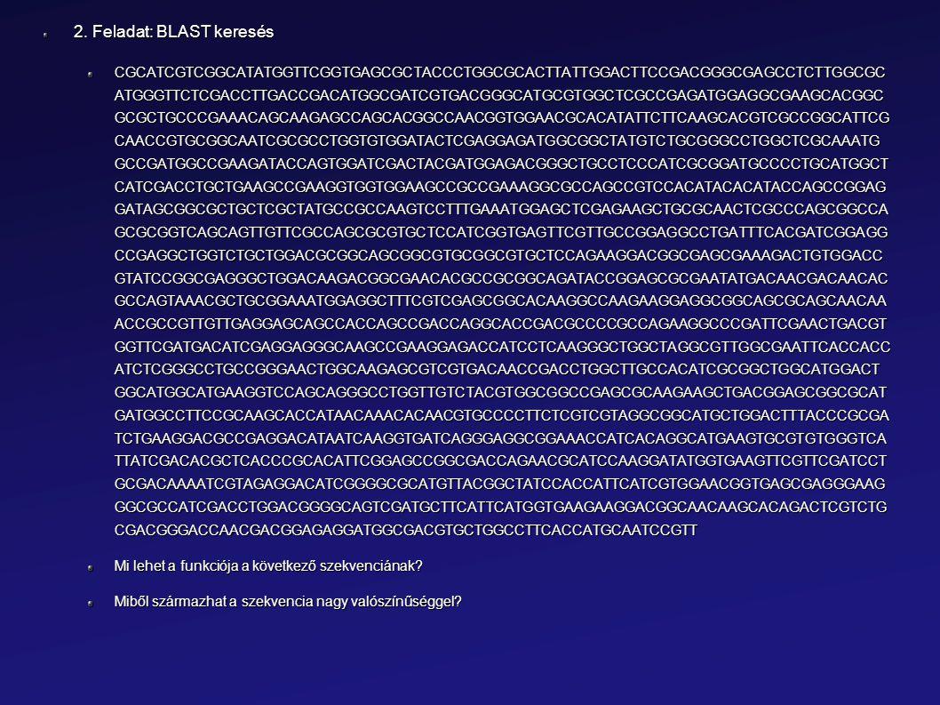 2. Feladat: BLAST keresés