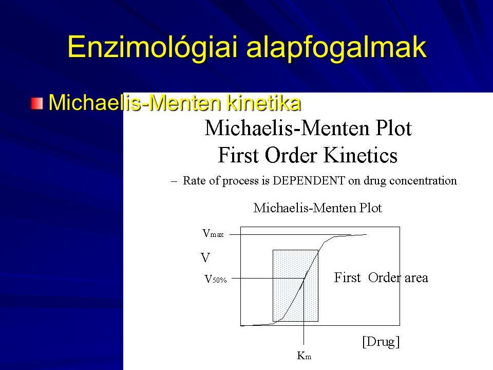 Enzimológiai alapfogalmak
