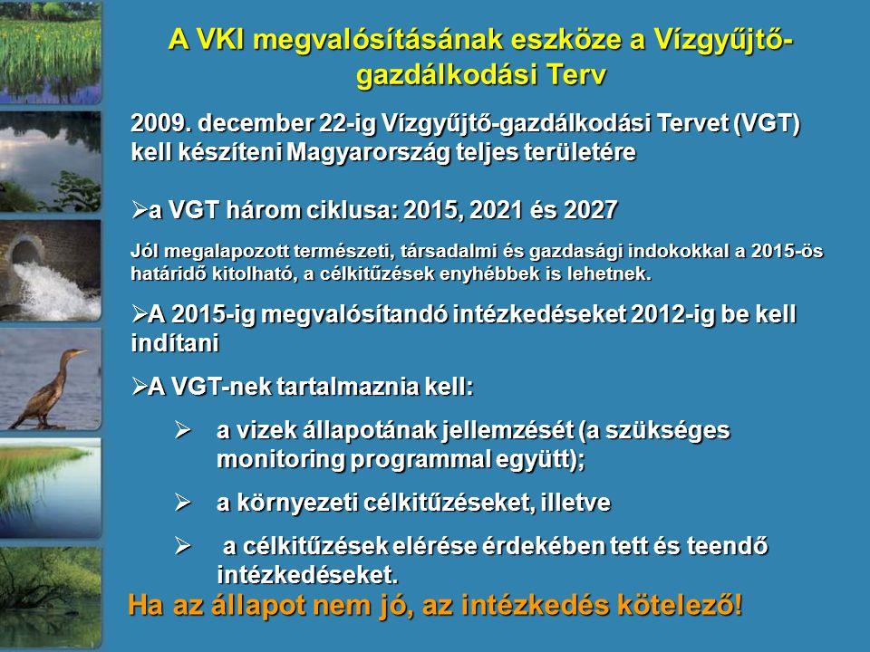 A VKI megvalósításának eszköze a Vízgyűjtő-gazdálkodási Terv