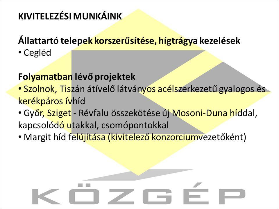 KIVITELEZÉSI MUNKÁINK