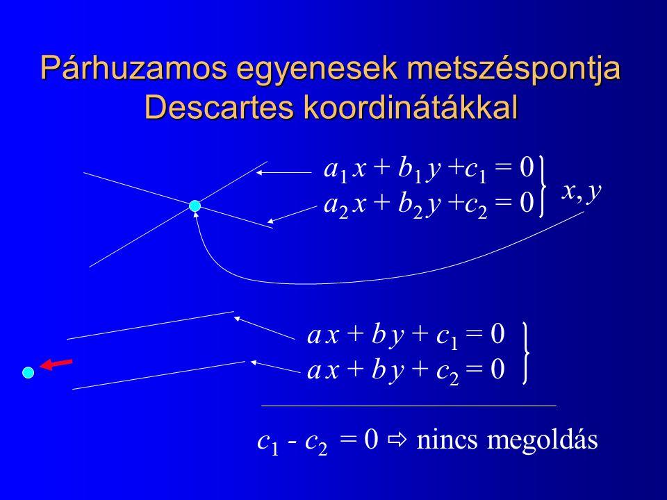 Párhuzamos egyenesek metszéspontja Descartes koordinátákkal