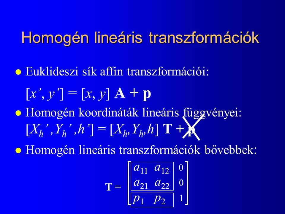 Homogén lineáris transzformációk