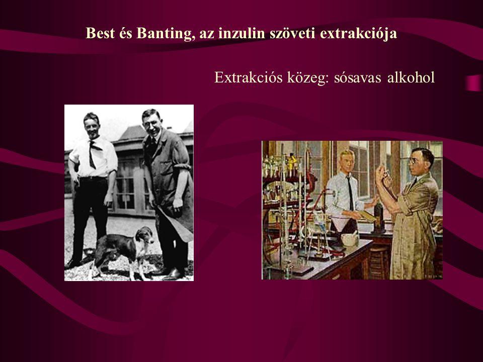 Best és Banting, az inzulin szöveti extrakciója