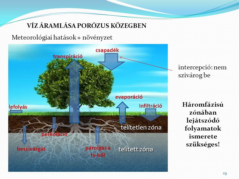Háromfázisú zónában lejátszódó folyamatok ismerete szükséges!