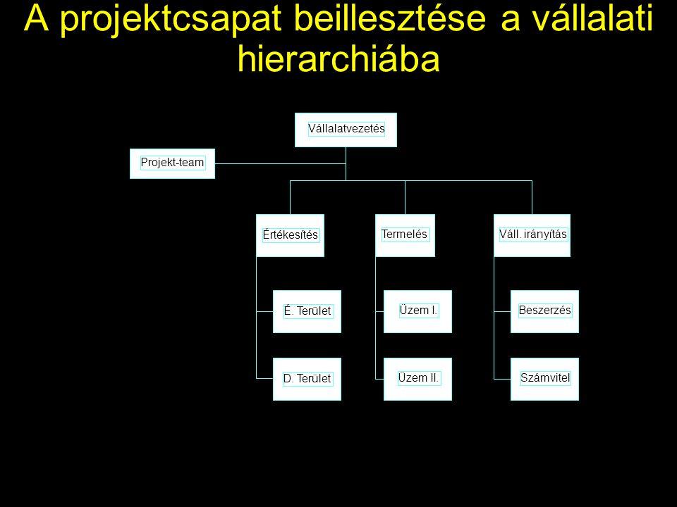 A projektcsapat beillesztése a vállalati hierarchiába