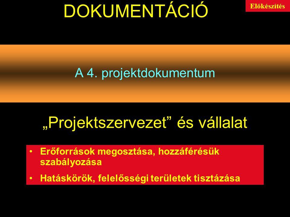 """""""Projektszervezet és vállalat"""