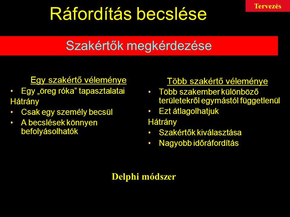 Ráfordítás becslése Szakértők megkérdezése Delphi módszer