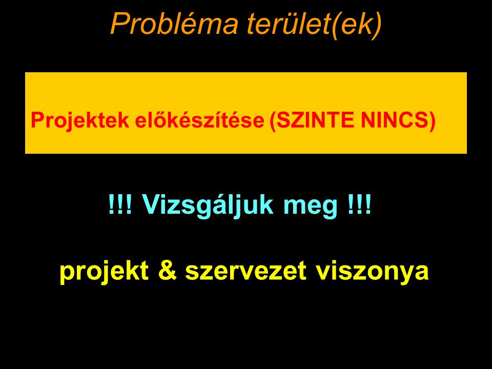 projekt & szervezet viszonya