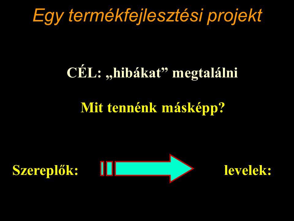 Egy termékfejlesztési projekt