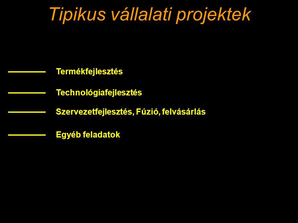 Tipikus vállalati projektek