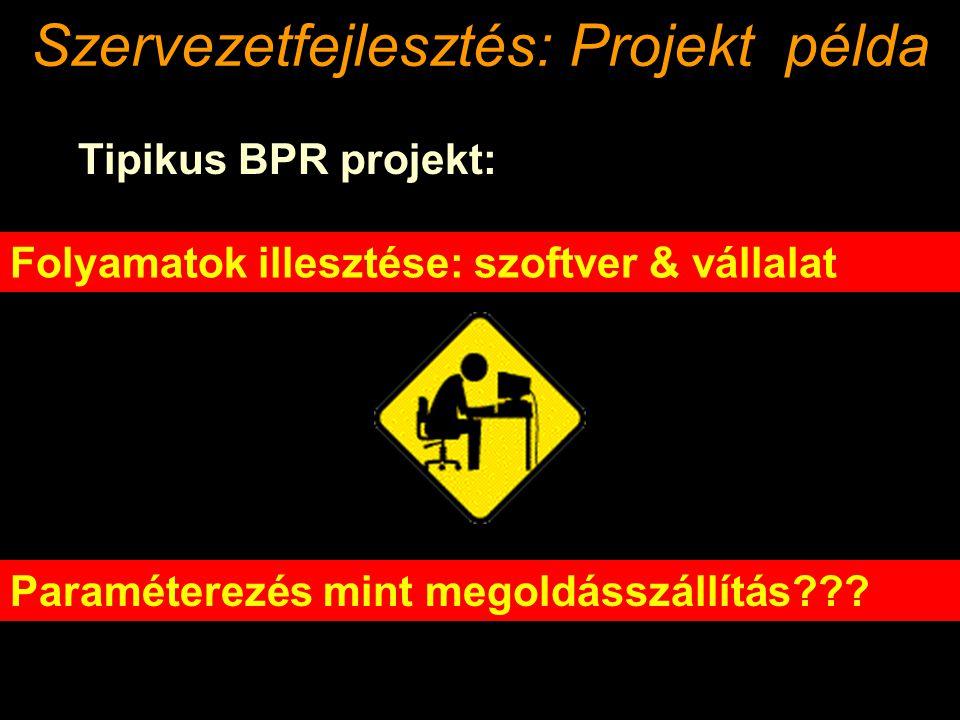 Szervezetfejlesztés: Projekt példa
