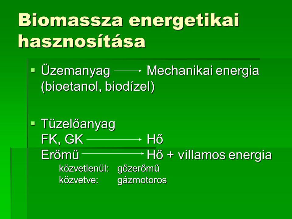 Biomassza energetikai hasznosítása