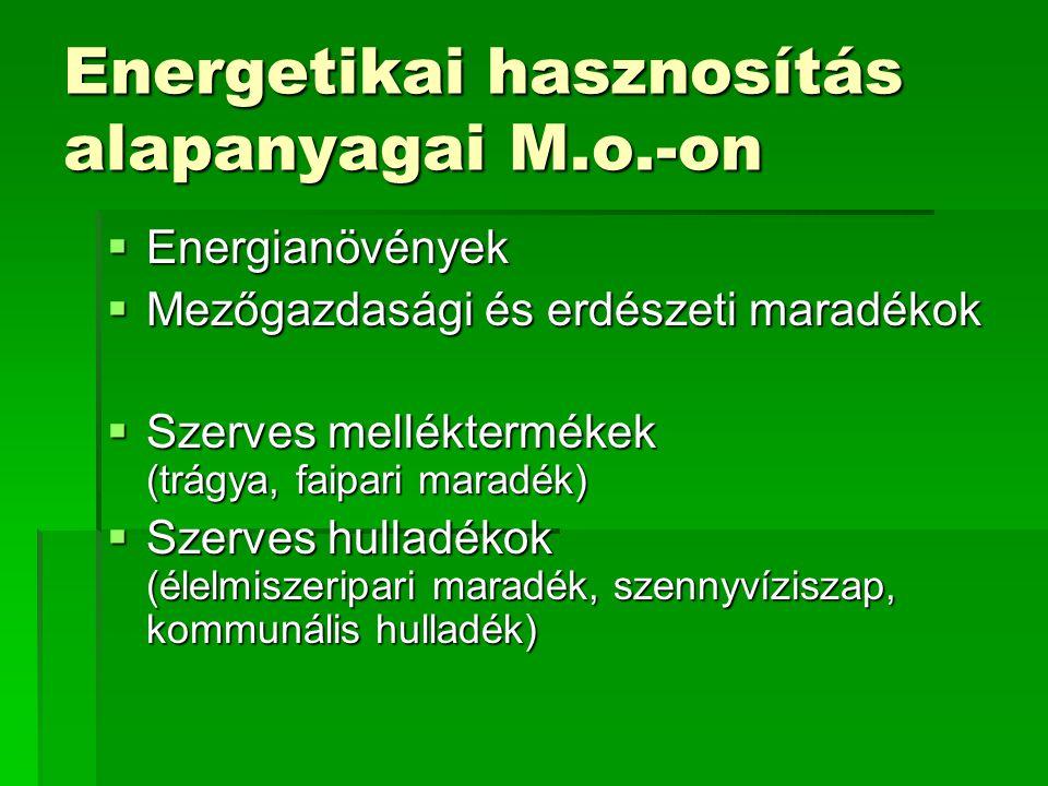 Energetikai hasznosítás alapanyagai M.o.-on