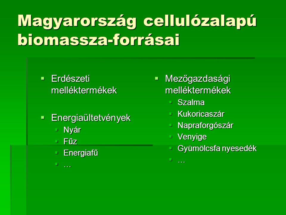 Magyarország cellulózalapú biomassza-forrásai