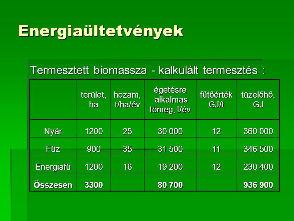 Energiaültetvények Termesztett biomassza - kalkulált termesztés :