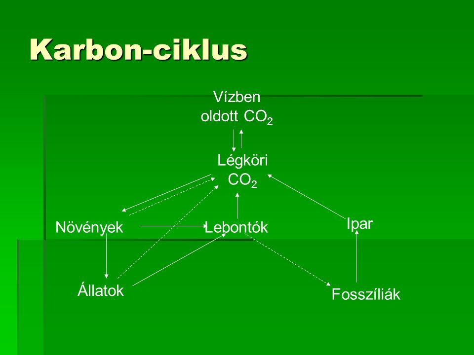Karbon-ciklus Vízben oldott CO2 Légköri CO2 Ipar Növények Lebontók