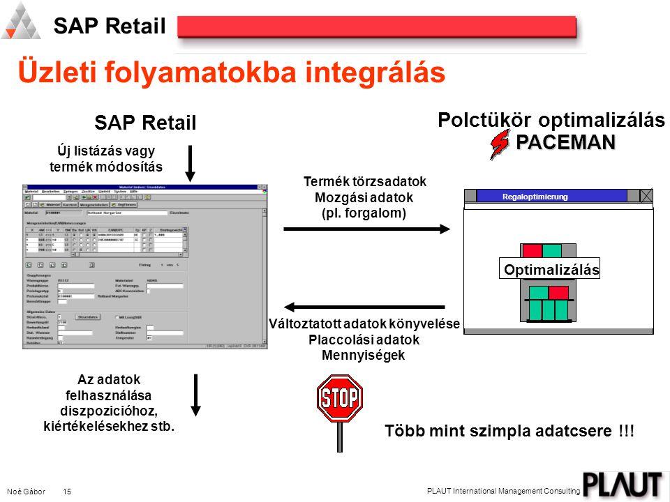 Üzleti folyamatokba integrálás