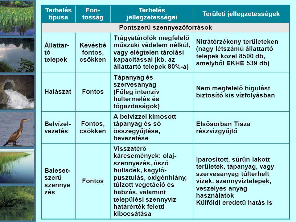 Terhelés jellegzetességei Területi jellegzetességek