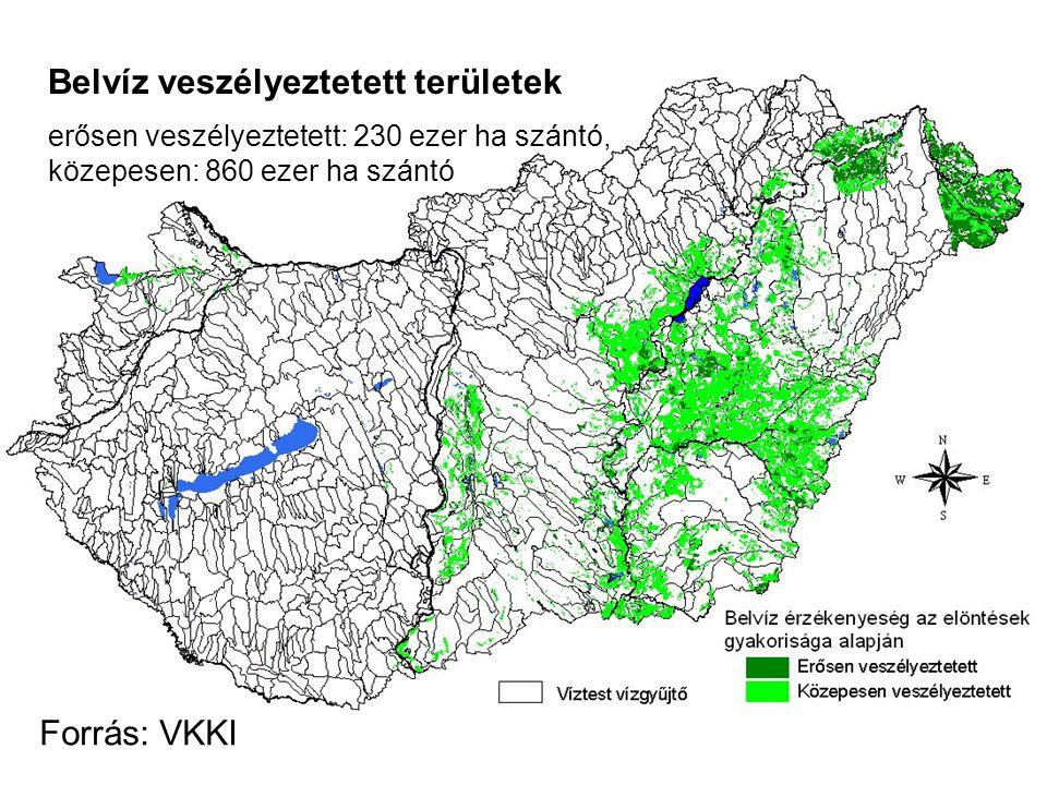 Belvíz veszélyeztetett területek