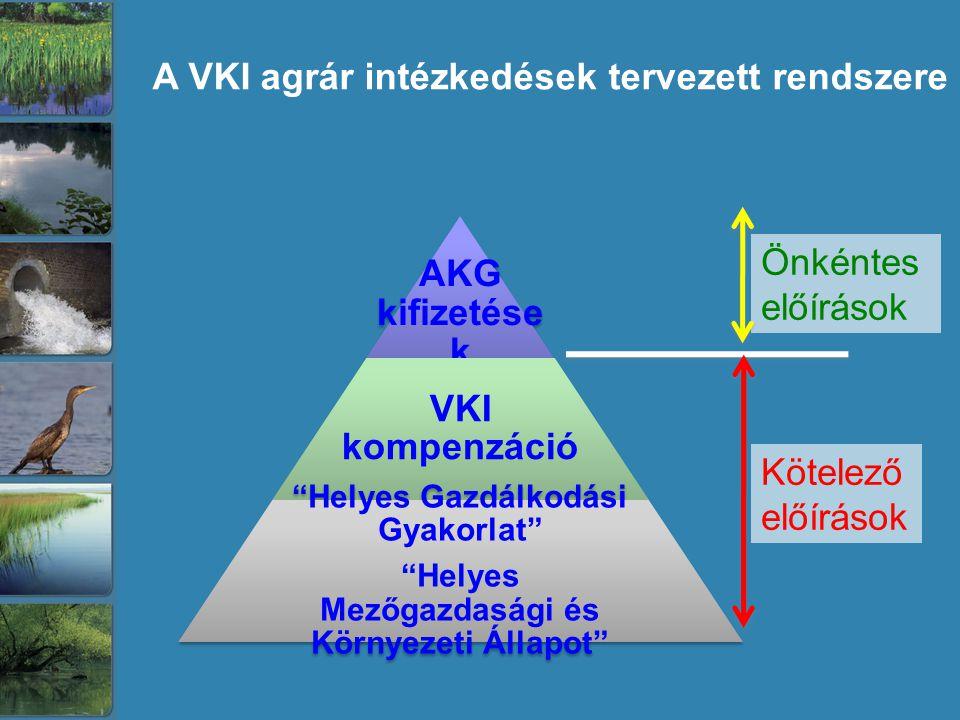 AKG kifizetések VKI kompenzáció