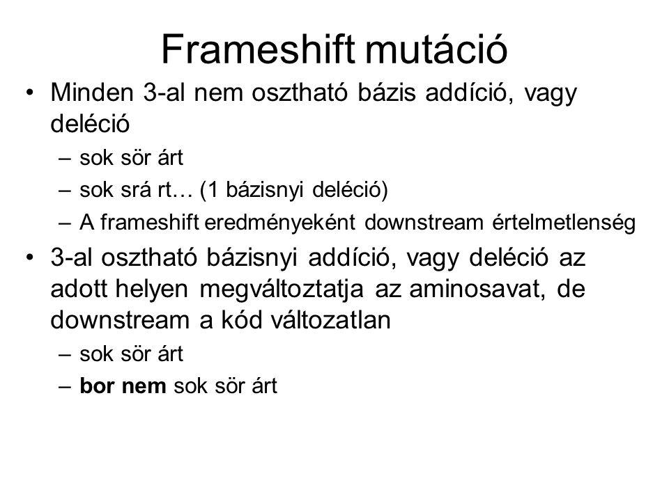 Frameshift mutáció Minden 3-al nem osztható bázis addíció, vagy deléció. sok sör árt. sok srá rt… (1 bázisnyi deléció)