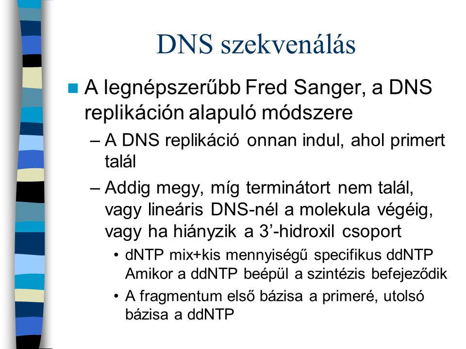 DNS szekvenálás A legnépszerűbb Fred Sanger, a DNS replikáción alapuló módszere. A DNS replikáció onnan indul, ahol primert talál.