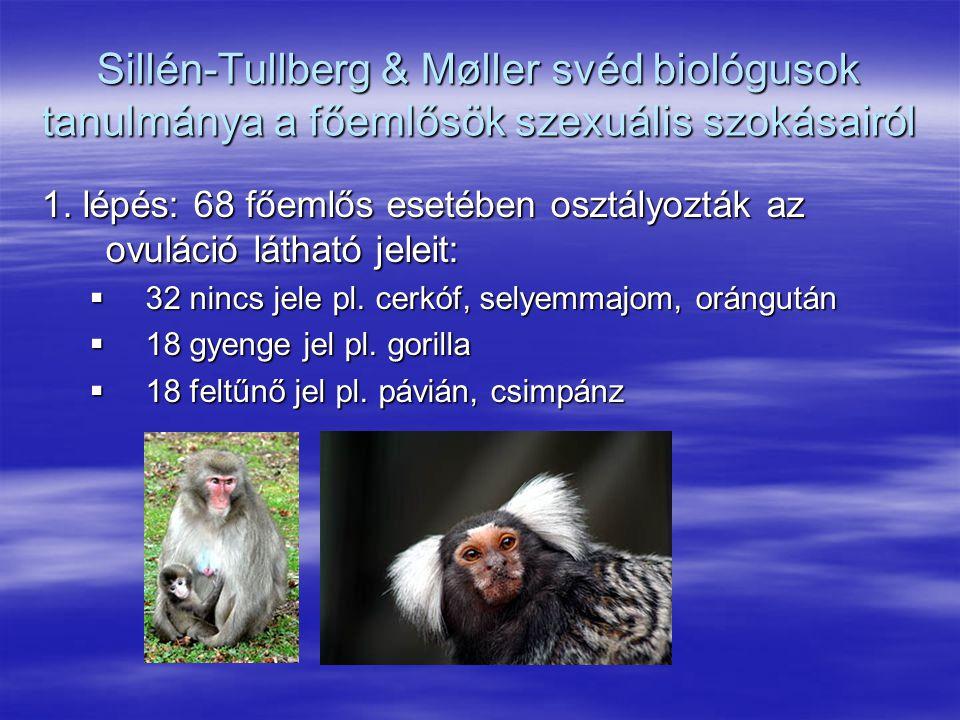 Sillén-Tullberg & Møller svéd biológusok tanulmánya a főemlősök szexuális szokásairól