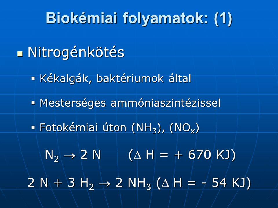 Biokémiai folyamatok: (1)