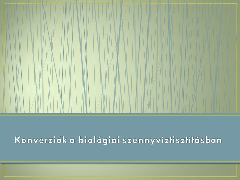 Konverziók a biológiai szennyvíztisztításban