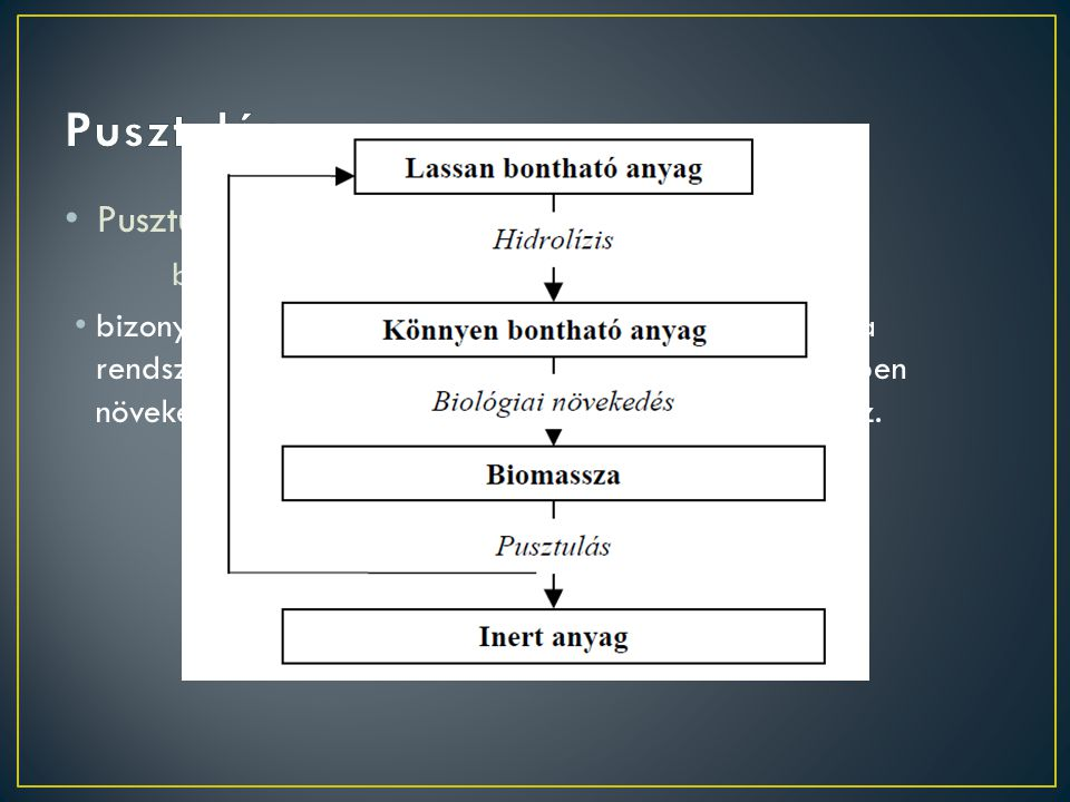 Pusztulás Pusztulás (elsőrendű kinetika): rV,XB = b·XB
