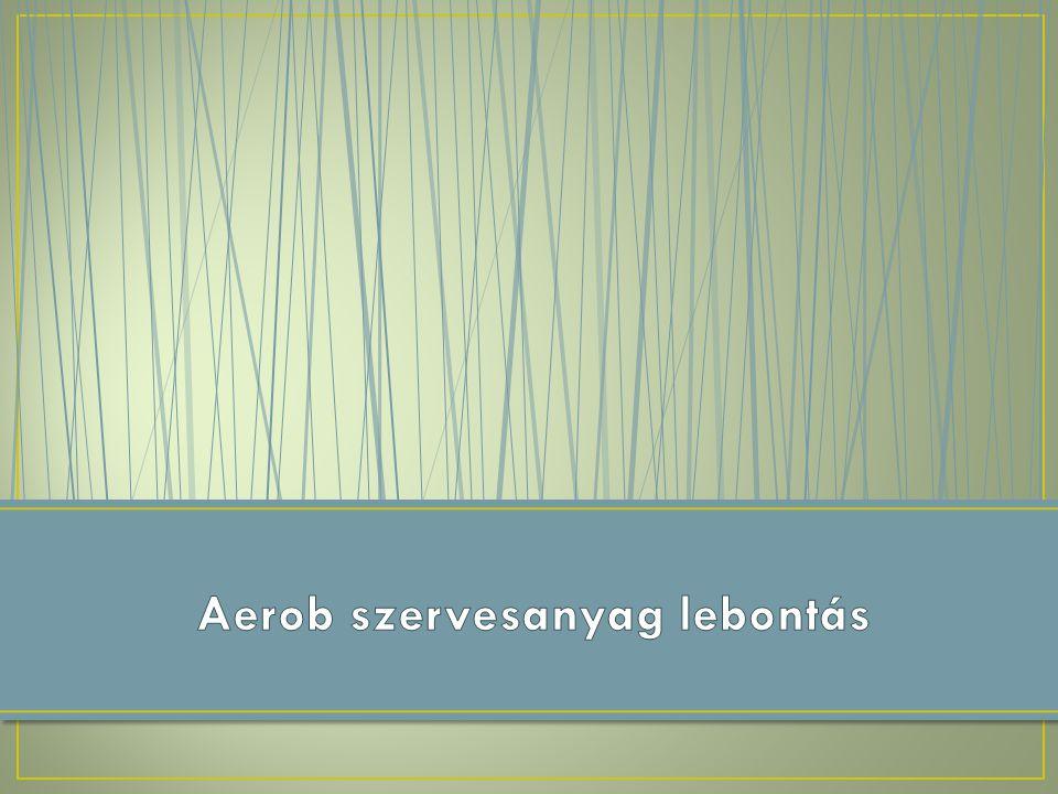 Aerob szervesanyag lebontás
