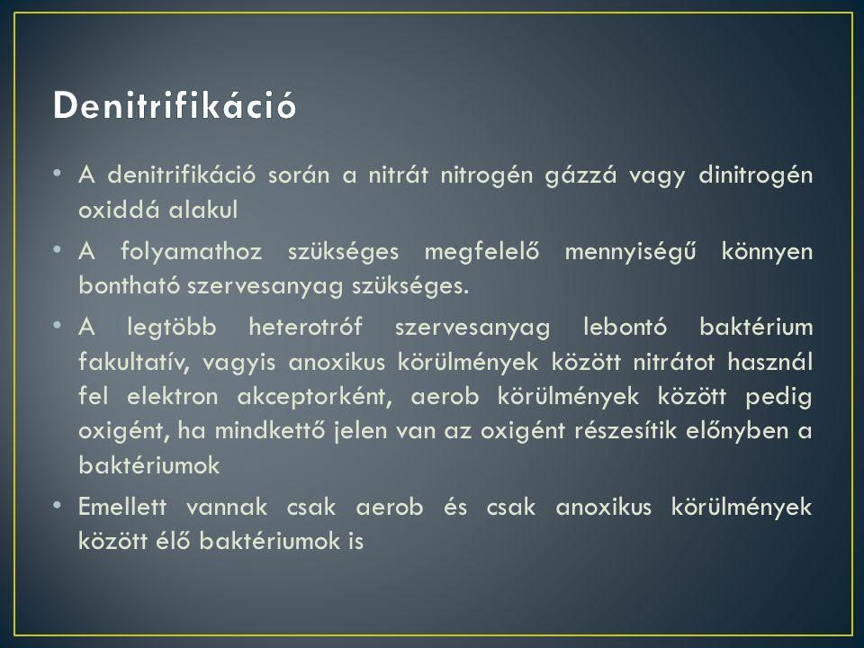 Denitrifikáció A denitrifikáció során a nitrát nitrogén gázzá vagy dinitrogén oxiddá alakul.