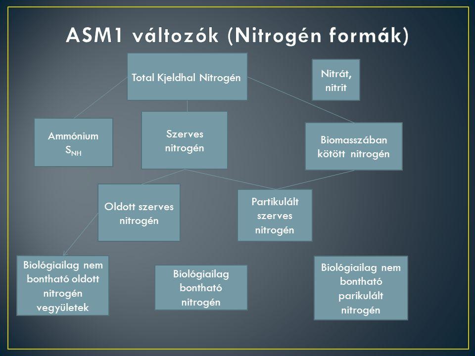 ASM1 változók (Nitrogén formák)