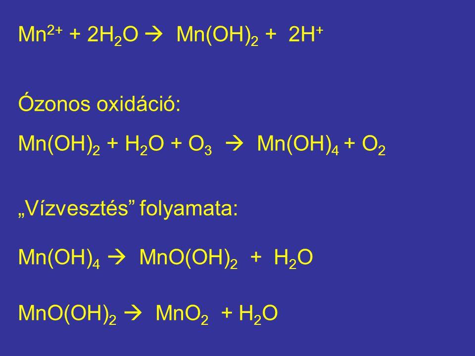 """Mn2+ + 2H2O  Mn(OH)2 + 2H+ Ózonos oxidáció: Mn(OH)2 + H2O + O3  Mn(OH)4 + O2. """"Vízvesztés folyamata:"""