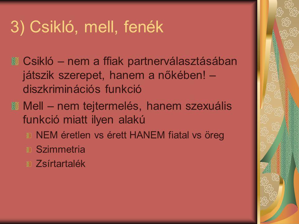 3) Csikló, mell, fenék Csikló – nem a ffiak partnerválasztásában játszik szerepet, hanem a nőkében! – diszkriminációs funkció.