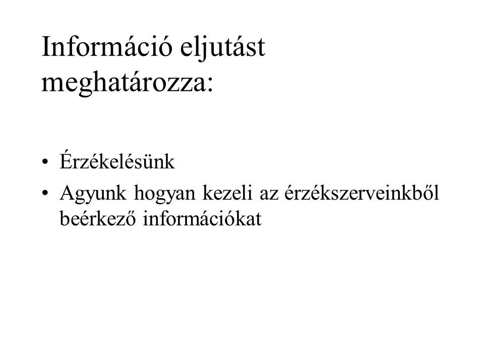 Információ eljutást meghatározza: