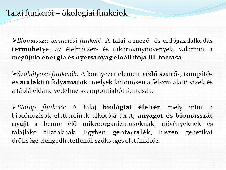 Talaj funkciói – ökológiai funkciók