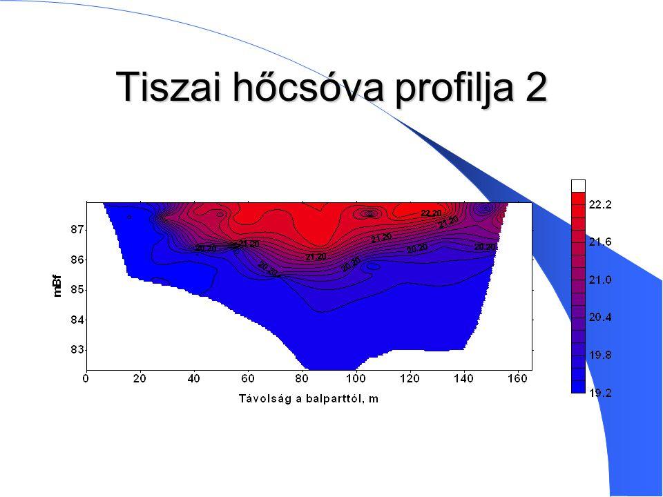 Tiszai hőcsóva profilja 2