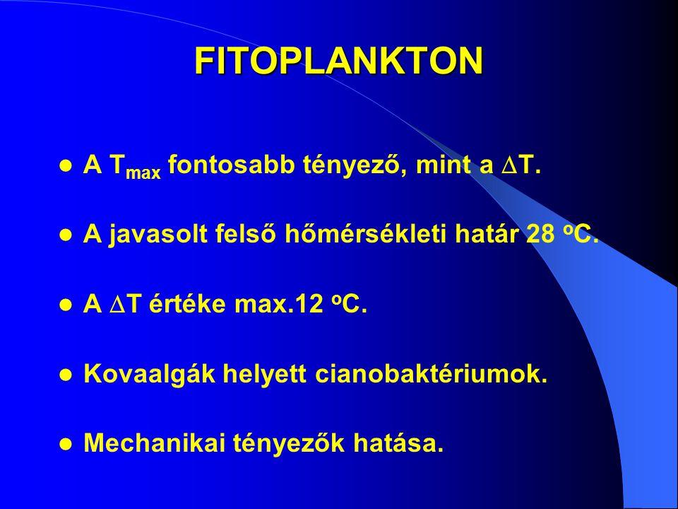 FITOPLANKTON A Tmax fontosabb tényező, mint a T.